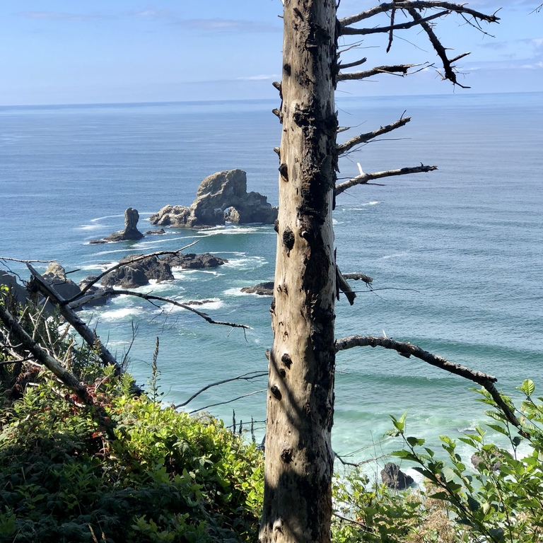 Ecola State Park at Cannon Beach, Oregon